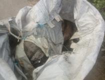 Corpo de um homem é encontrado dentro de um saco em Itabuna
