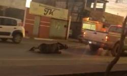Motorista é filmado arrastando cavalo amarrado em carro na Bahia