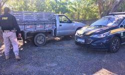 PRF apreende quase meia tonelada de carne bovina transportados irregularmente na Região Norte da Bahia