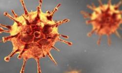 Em número recorde, boletim da Bahia registra 50 mortes por coronavírus nesta segunda