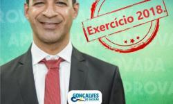 CONTAS DO EX-PREFEITO GONÇALVES EXERCÍCIO 2018 SÃO APROVADAS NA CÂMARA