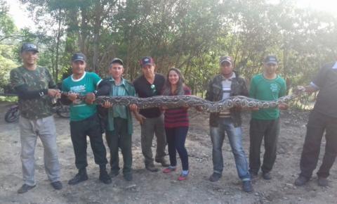 Jiboia será transferida do Parque Sete Passagens em Miguel Calmon para Zoológico em Salvador.