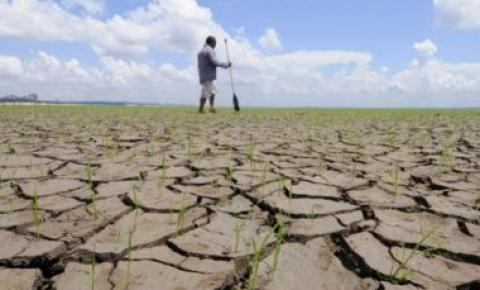 Estiagem e seca deixam 45% dos municípios baianos em estado de emergência