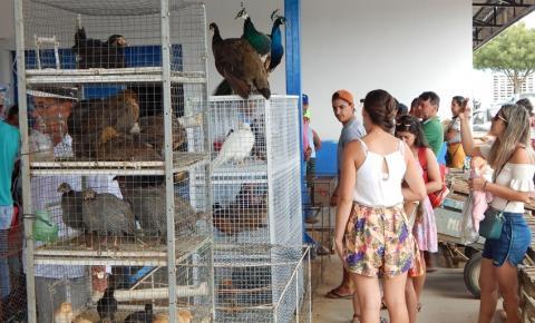 Realizada com sucesso a 1ª Feira de Aves e Pequenos Animais de Várzea do Poço