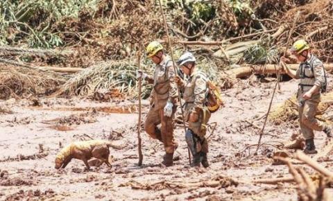 Homem é encontrado vivo após 2 meses de buscas em Brumadinho.