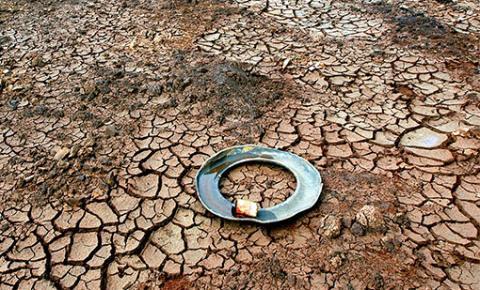 Municípios nordestinos passam pela pior seca dos últimos cem anos; CNM aponta impactos