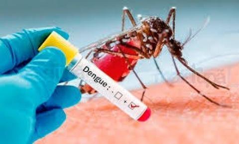 Criança de 7 anos morre vítima de dengue hemorrágica em Jacobina