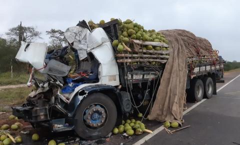 Acidente entre carreta e caminhão deixa quatro mortos no norte da Bahia; Criança de 1 ano está entre vítimas.