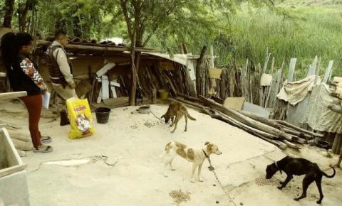 24ª CIPM prende indivíduo por maus-tratos a animais e posse ilegal de armas de fogo