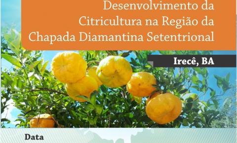 Eventos em Irecê discutem a citricultura na Chapada Diamantina