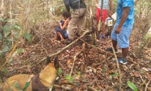 Mulher desaparecida é encontrada por cães farejadores na Bahia; veja vídeo