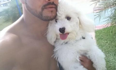 Cachorro desaparecido em Serrolândia
