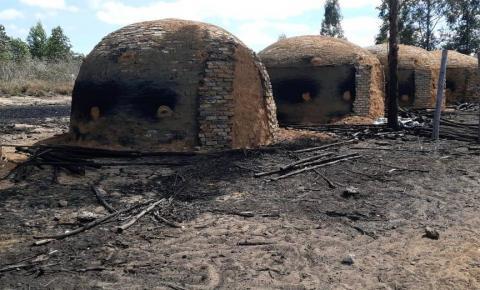 Operação 'Mata Atlântica em Pé' apreende carvão e lenha nativa extraídos sem licença na Bahia
