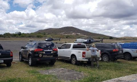 Operação de combate ao tráfico localiza plantio de 40 mil pés de maconha no município de Campo Formoso