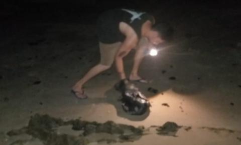 Óleo chega às praias de Morro de São Paulo, região turística da Bahia