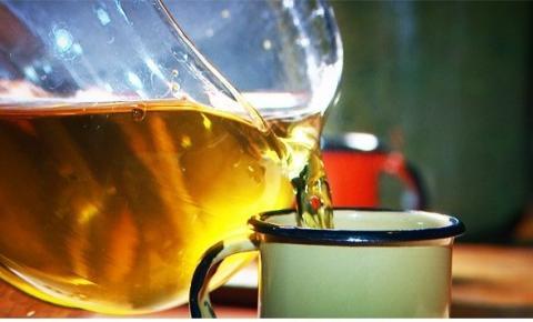 Chá de quebra-pedra trata de cólicas renais: aprenda a preparar