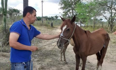 Secretaria da Agricultura de Serrolândia resgata animais que sofriam maus tratos