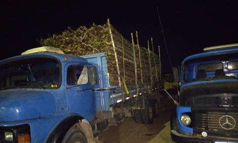 Equipes do Inema e Parque Estadual Sete Passagens apreende carga ilegal de madeira