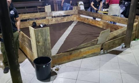 40 pessoas são presas em rinha de Pit-Bull
