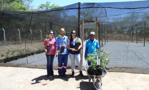 Embasa implanta viveiro de mudas na área verde da Estação de Tratamento de Água do Rio da Prata