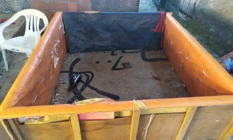Mais de 40 homens são detidos após serem flagrados em rinha de galo na Bahia
