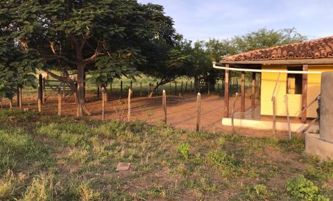 Vende-se sítio com moradia na fazenda Gitirana, próximo ao Alto do Coqueiro, a 06 quilômetros de Várzea do Poço/BA e Serrolândia.