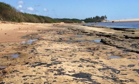 Óleo em praias da BA provoca desequilíbrio ecológico e Ibio diz que reversão deve durar uma década: 'Situação muito grave'