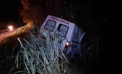 Ambulância de Ourolândia colide com animal na BR 324 em Jacobina