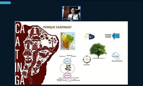 Licuri produzido na Bahia é destaque no IX Workshop Potencial Biotecnológico da Caatinga