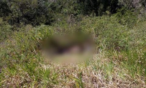 Corpos de jovens de Serrolândia são encontrados na Serra do Tombador em Jacobina