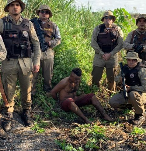 Cinco mil pés de maconha são erradicados no interior da Bahia