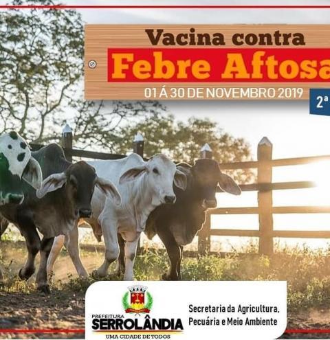 Vacinação contra a Febre Aftosa começa na sexta dia 01 e vai até o dia 30 de novembro.
